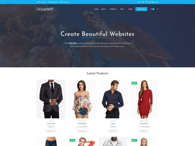 oceanwp-wordpress-theme