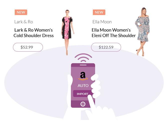 Create a Profitable Amazon Affiliate Store with WordPress
